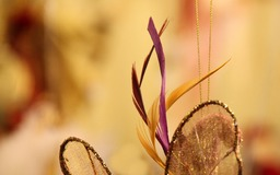 feathers_by_andre_tr